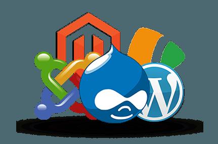 El problema de usar un CMS de código abierto y recomendaciones